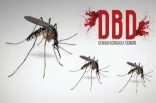 Jaksel  Menempati Urutan Teratas Korban DBD